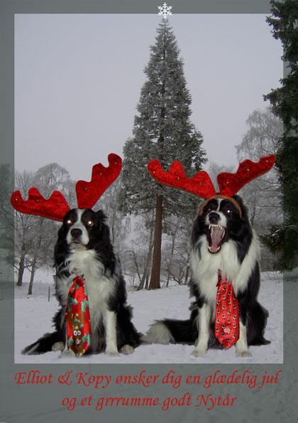 Glædelig Jul fra alle os til alle jer