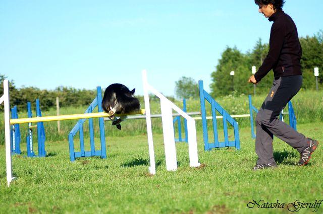 Sookie springer tæt over - og nej, ingen nedrivning!