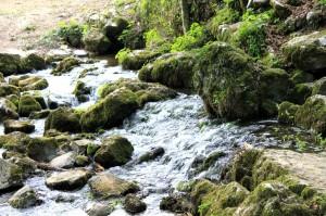 Krka flodens udspring