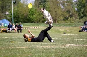 Frisbee konkurrence