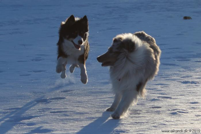 Flyvende Sookie ;-)